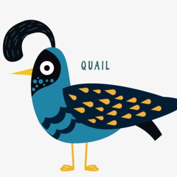 quail62